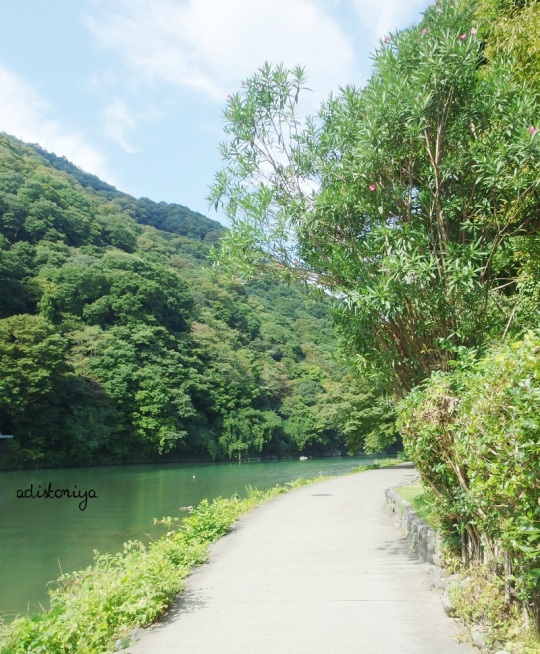 arashiyama-11
