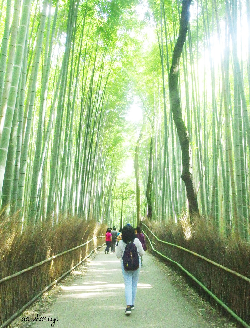 A Day in Arashiyama, Kyoto (Part 2) : Bamboo Groove & How to GetThere