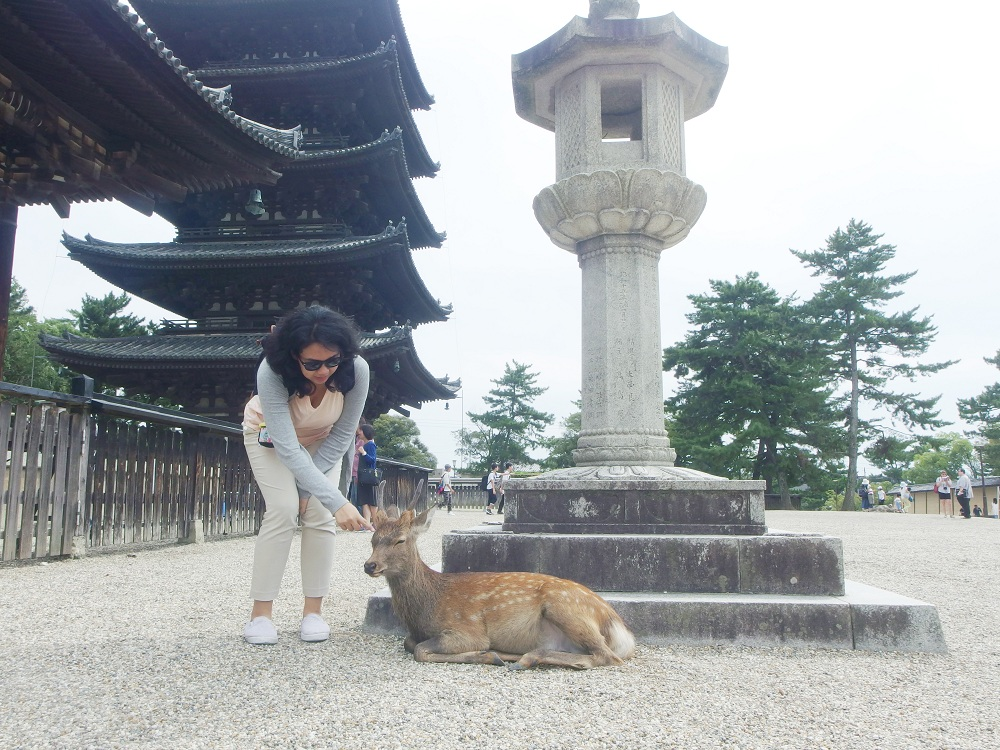 Nara & My DumbMistake